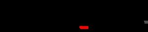 Evan Silberman NYC Logo